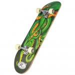 Skateboard HB2004 C